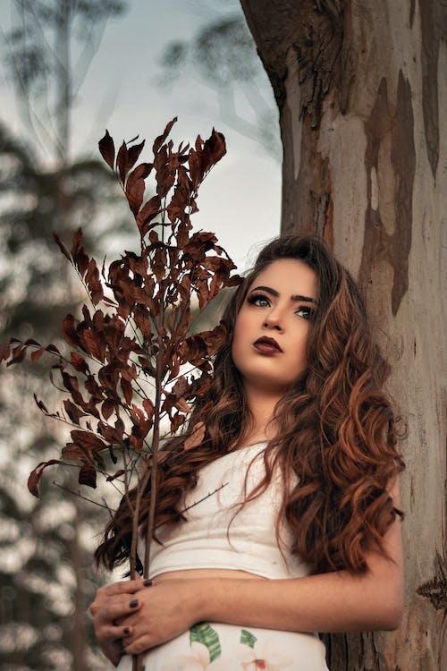 Foto d'estoc gratuïta de adult, arbre, bonic, cabell