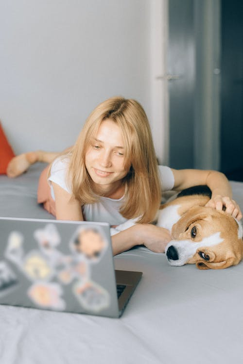 Woman Petting her Dog and Looking at her Laptop