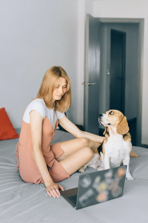 Woman Sitting in Bed with Her Laptop and Her Dog