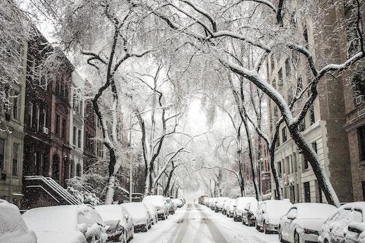 Kostenloses Stock Foto zu kalt, schnee, stadt, straße