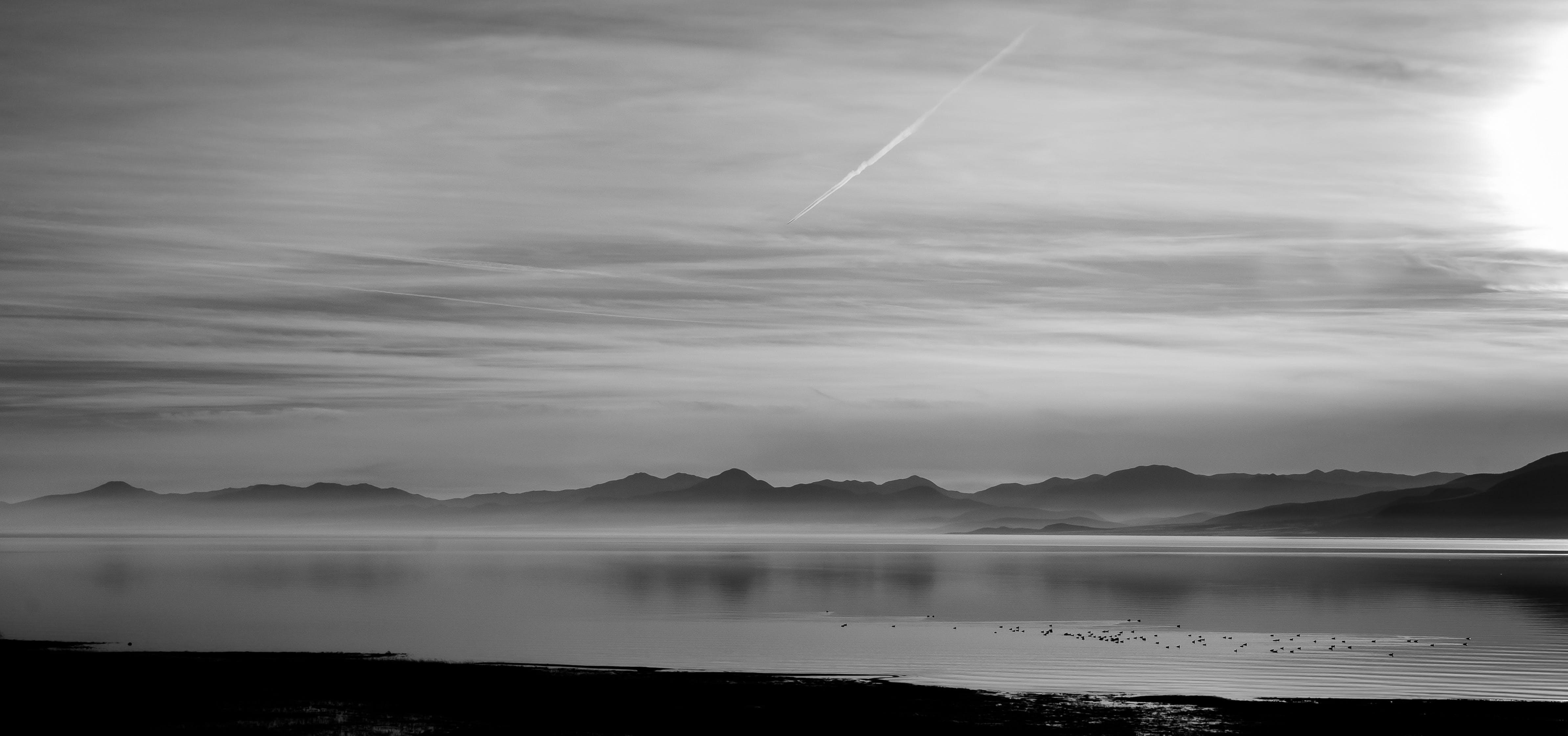 Free stock photo of beach, black-and-white, dawn, dusk