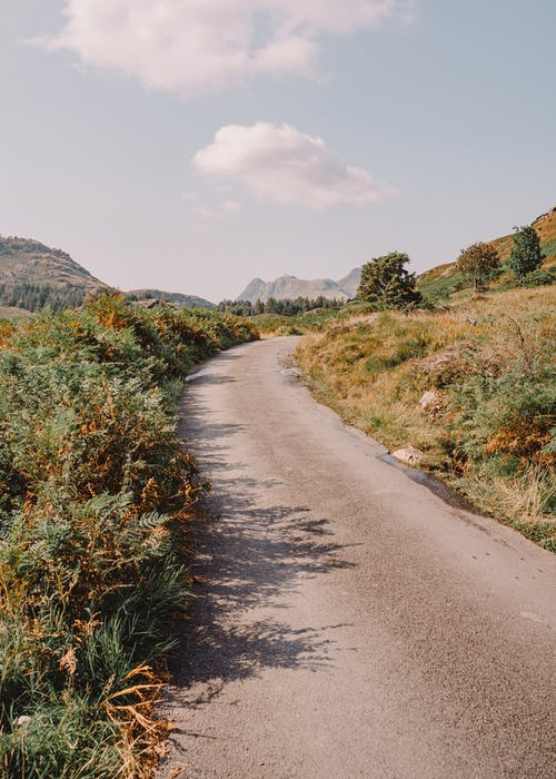 Gray Concrete Road Between Green Grass Field