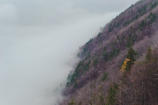 Free stock photo of nature, hill, mountain, fog