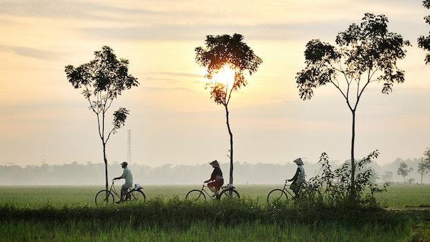 Free stock photo of landscape, people, summer, sun
