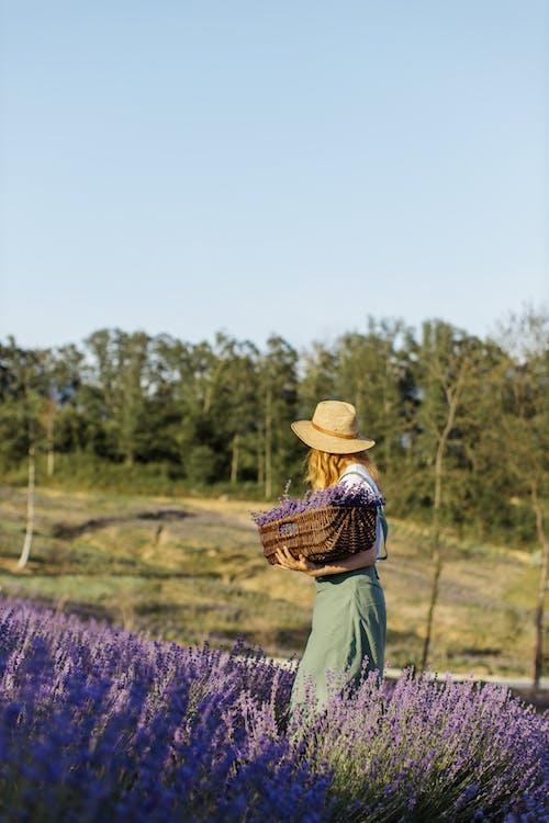 Person in Brown Woven Hat Standing on Purple Flower Field