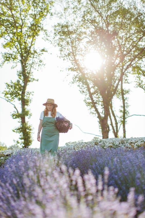 Man in Brown Jacket Carrying Woman in Brown Jacket Standing on Purple Flower Field