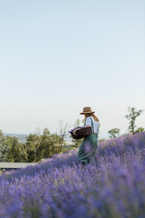Woman in Green Long Sleeve Shirt and Brown Hat Standing on Purple Flower Field
