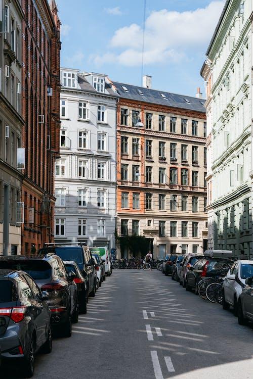 丹麥, 交通系統, 公車, 哥本哈根 的 免費圖庫相片