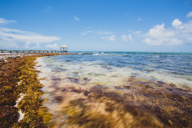 Free stock photo of jetty, sea, vacation, water