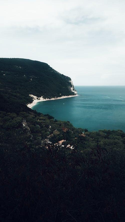 Lush green mountains near rocky seashore