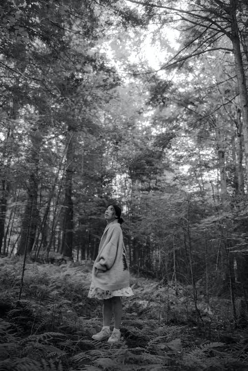 Безкоштовне стокове фото на тему «вказівки, Деревина, дерево, дитина»
