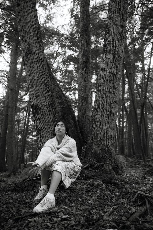 Безкоштовне стокове фото на тему «Деревина, дерево, Дівчина, дорослий»