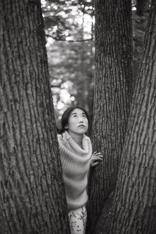 Gratis stockfoto met aantrekkelijk mooi, adolescent, blad, boom