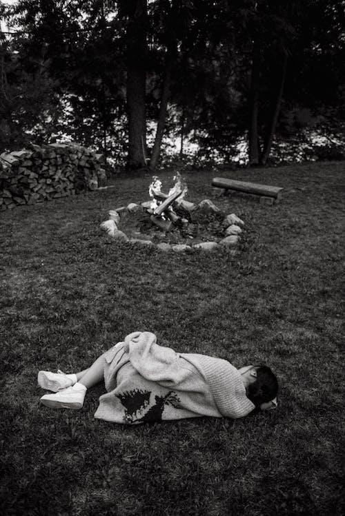 Безкоштовне стокове фото на тему «відпочинок, група, групувати, дерево»