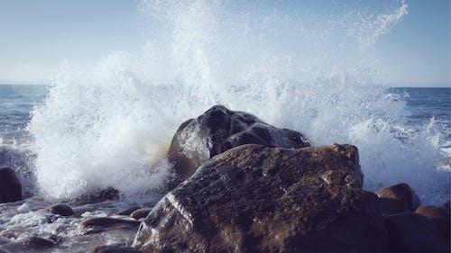 คลังภาพถ่ายฟรี ของ naturee, คลื่น, ชายทะเล, ชายฝั่งทะเล