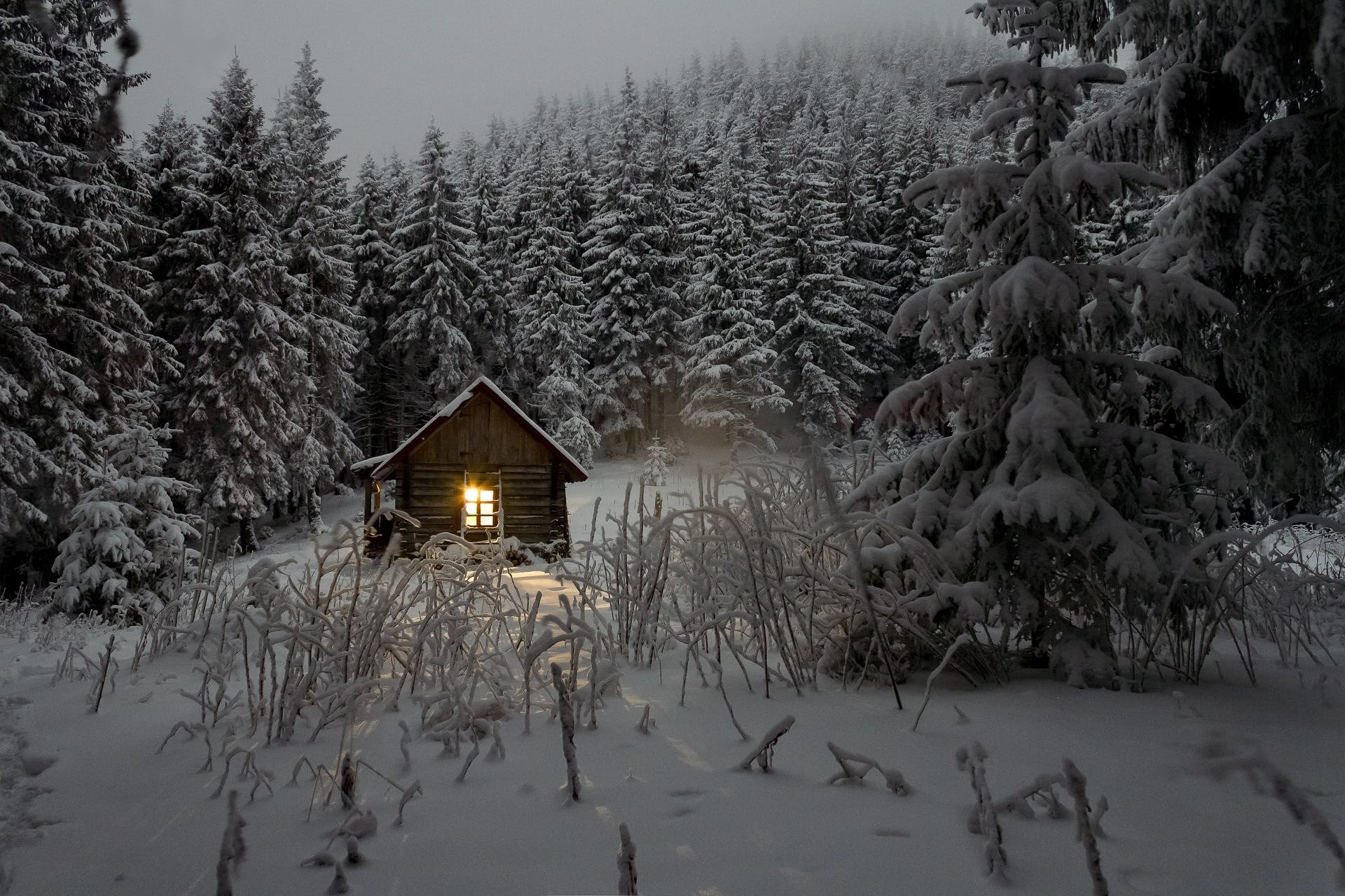 Free stock photo of snow, nature, winter, house
