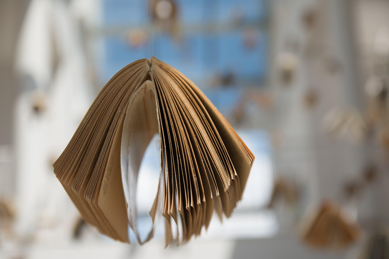 book, education, macro
