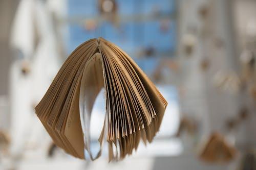 Kostnadsfri bild av bok, makro, papper, sidor