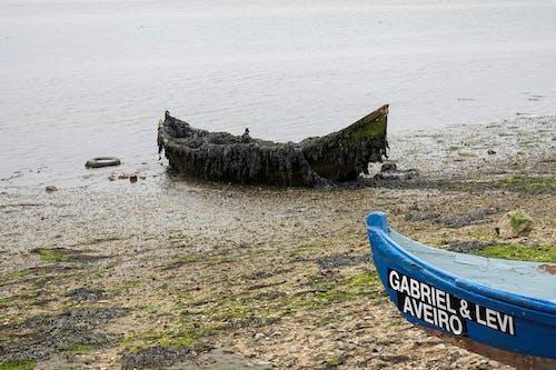 Free stock photo of abandoned, aveiro, boat