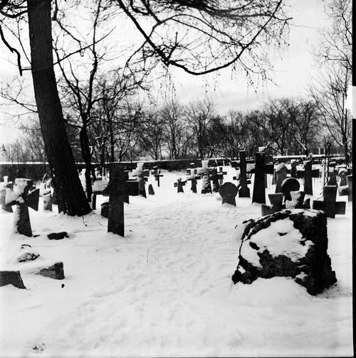 Black and white of cemetery with stone crosses under leafless tree in snowy winter