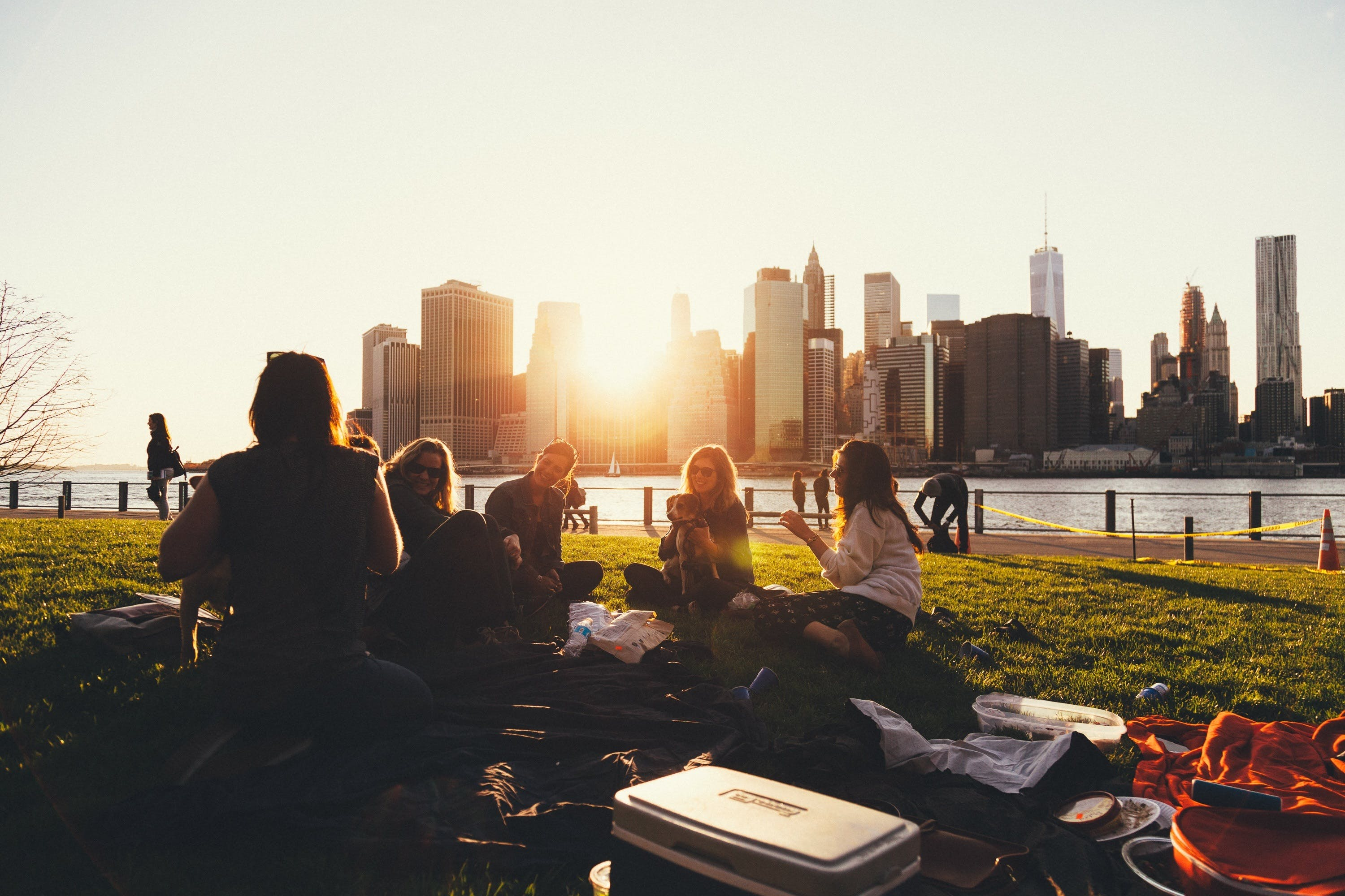 Free stock photo of picnic, friends, outdoors, social