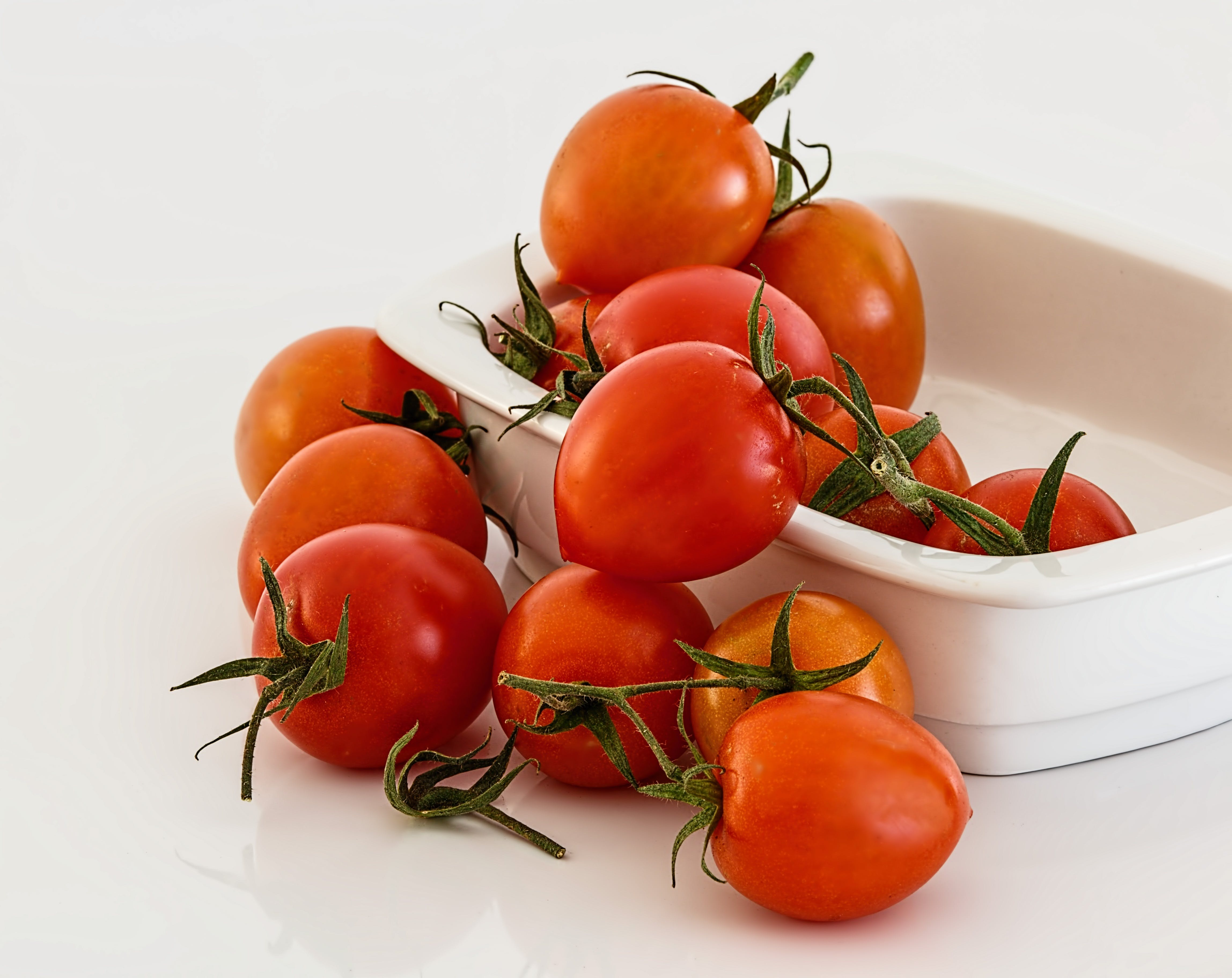 Red Tomatoes on White Bowl