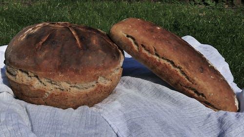 Free stock photo of brązowy chleb, chleb pszenny, flatbread