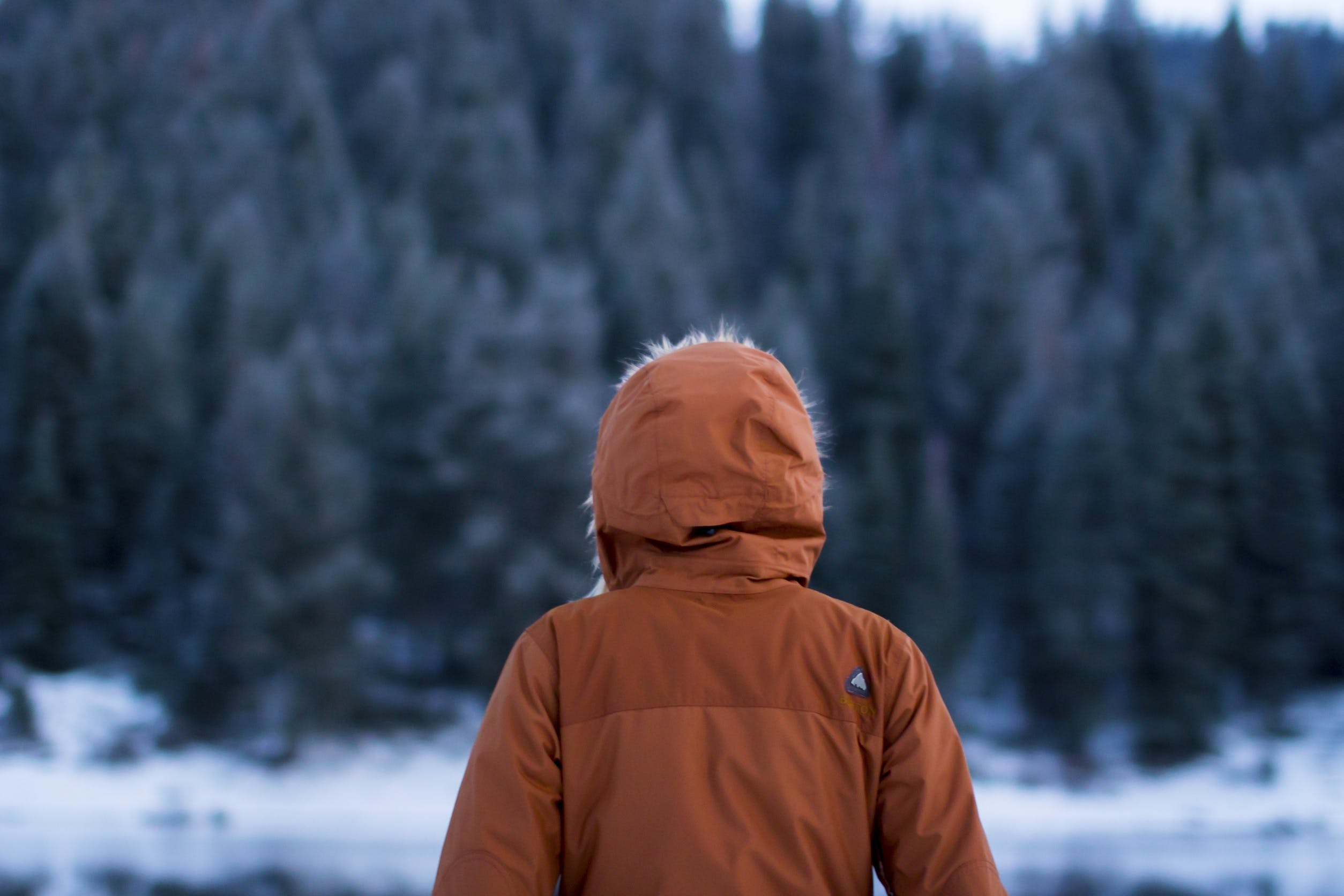 Free stock photo of cold, wood, person, winter