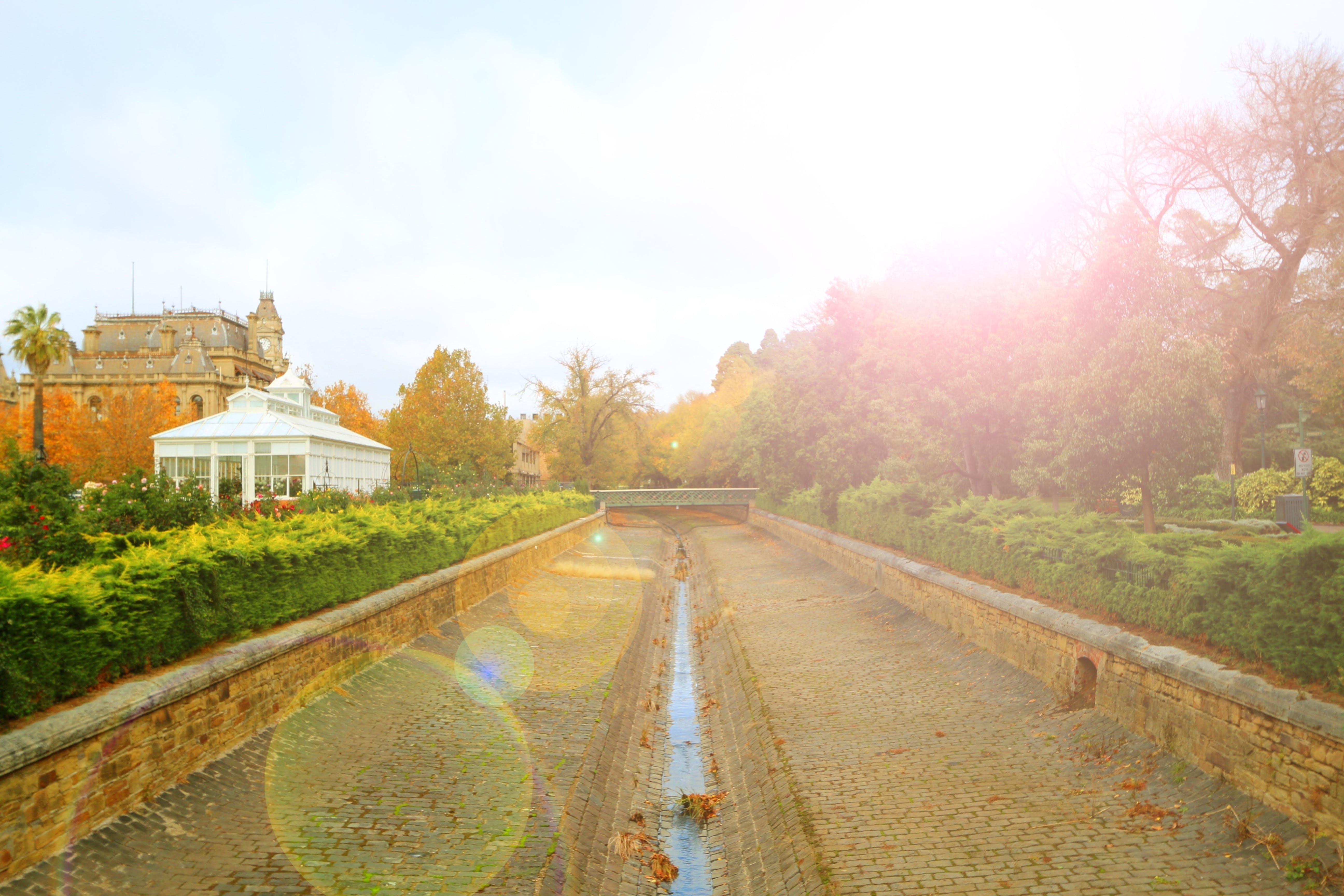 Free stock photo of garden, trees, architecture, foliage