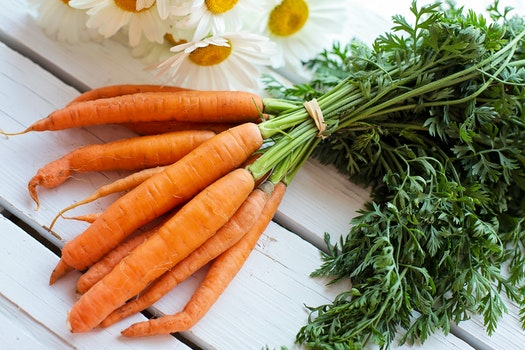 Free stock photo of food, healthy, vegetarian, harvest