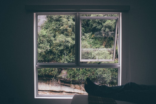 White Person Lying on Bed Near White Wooden Window