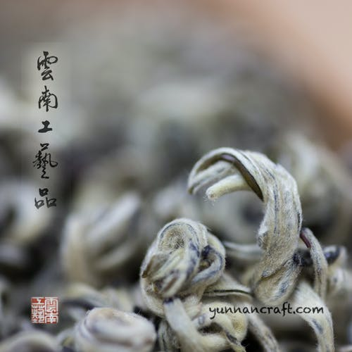 Free stock photo of Chinese high grade green tea, top quality green tea