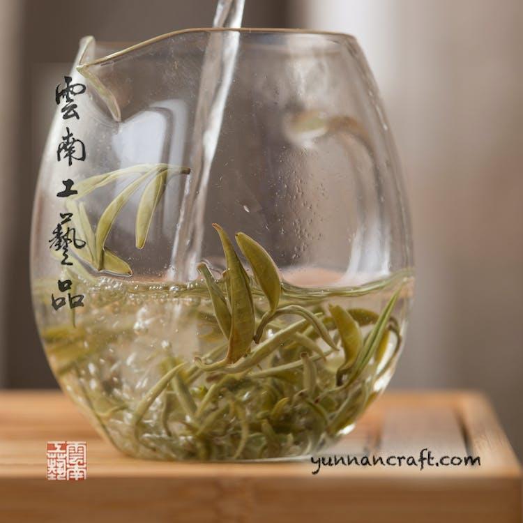 Free stock photo of bi luo chun highest grade, green biluochun, spring biluochun