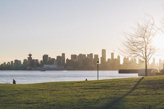 Free stock photo of city, water, skyline, buildings
