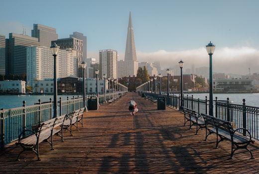 Free stock photo of bench, sea, city, sky