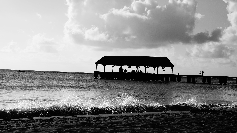 Free stock photo of sea, black-and-white, nature, sky