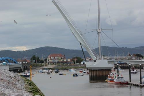 Free stock photo of beach, boats, crane, dock