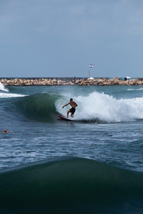 Gratis lagerfoto af bølge, dagslys, fritid, handling