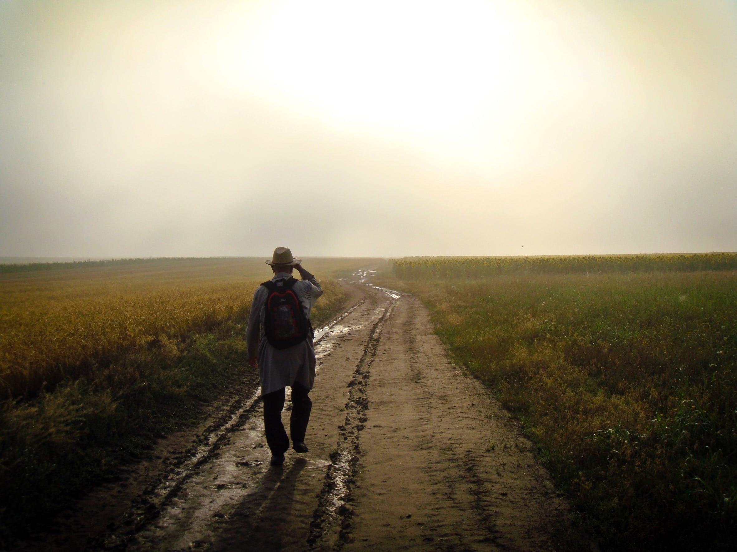 Free stock photo of backpack, dirt, dusk, fields