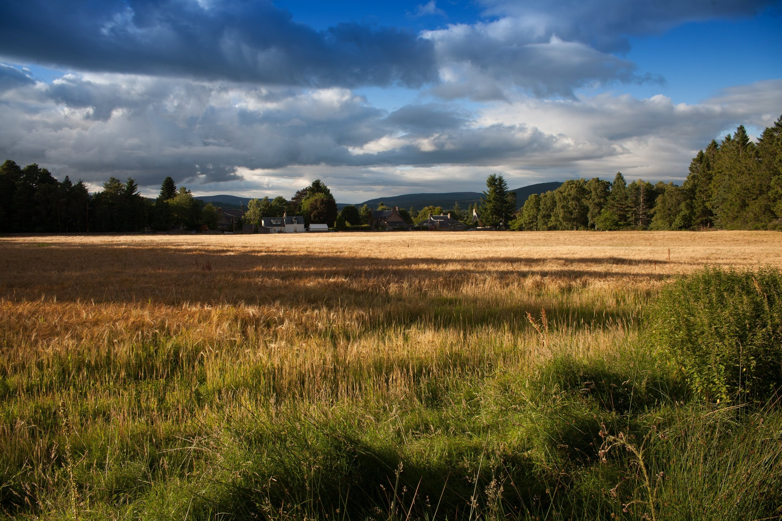Free stock photo of agriculture, clouds, country, countryside