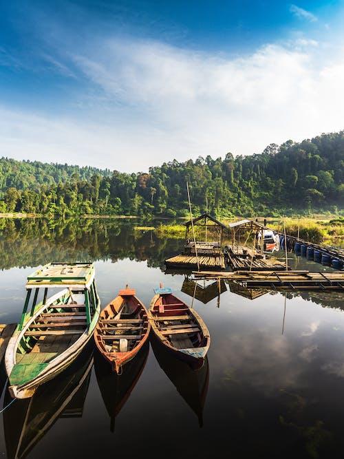 Free stock photo of early sunrise, lake, village