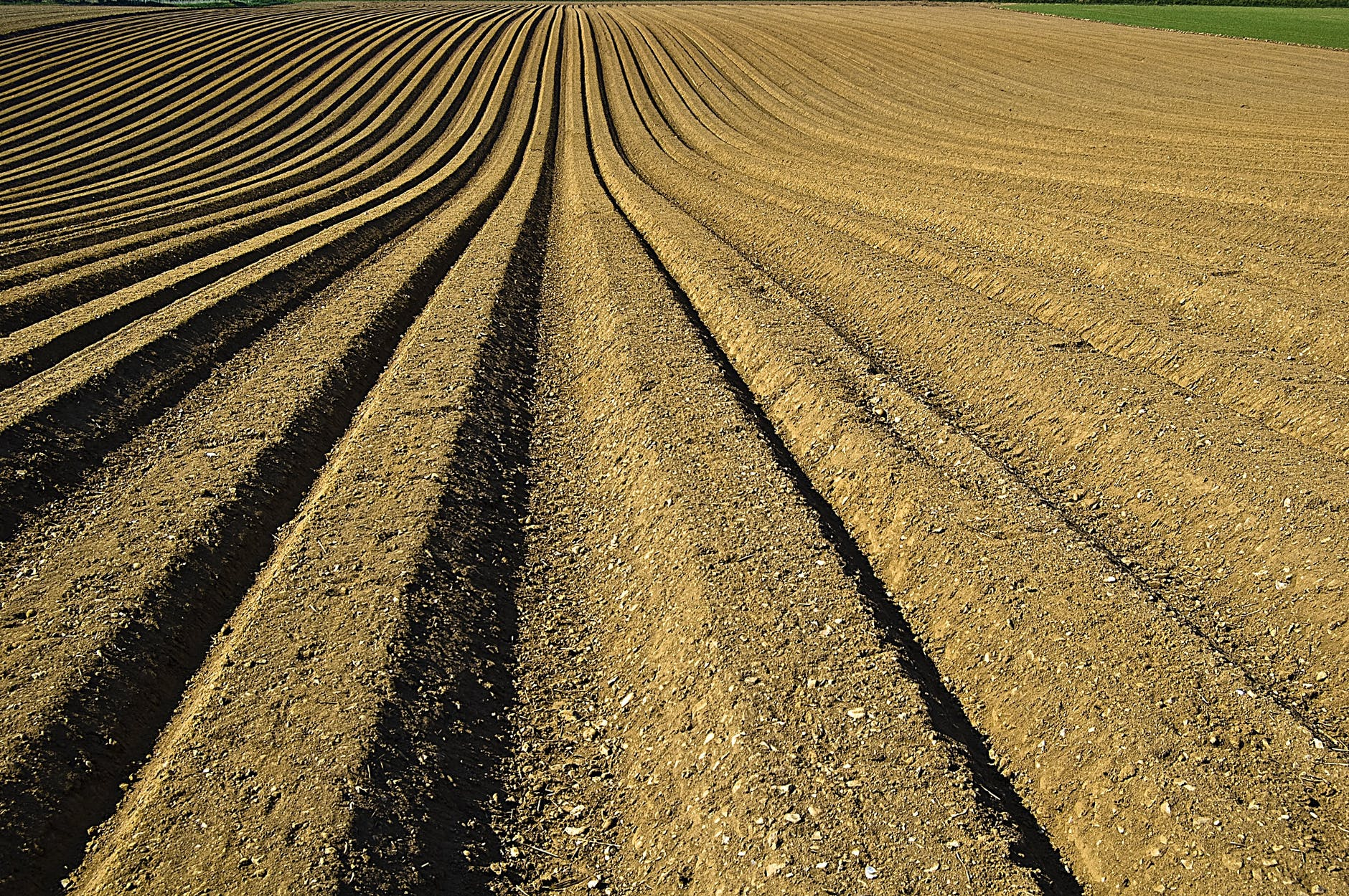 an analysis of the agriculture plowing up new soil