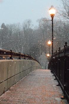 Free stock photo of cold, bridge, winter, path