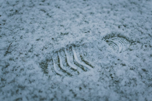 Free stock photo of cold, snow, footprint, winter