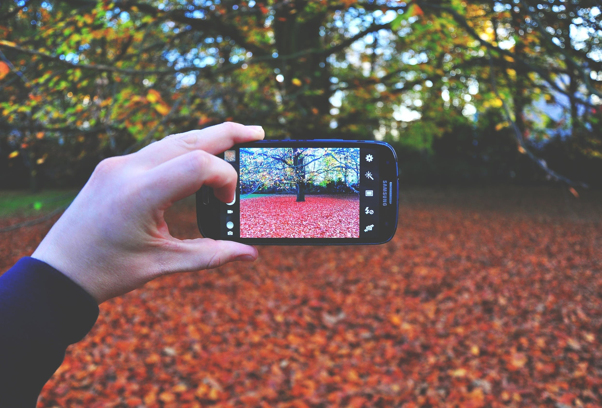Free stock photo of autumn, fall, galaxy, hands
