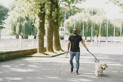 Man in Black T-shirt and Blue Denim Jeans Holding White Dog