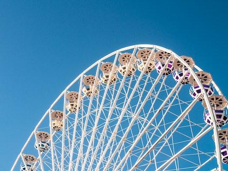 Free stock photo of sky, blue, park, big