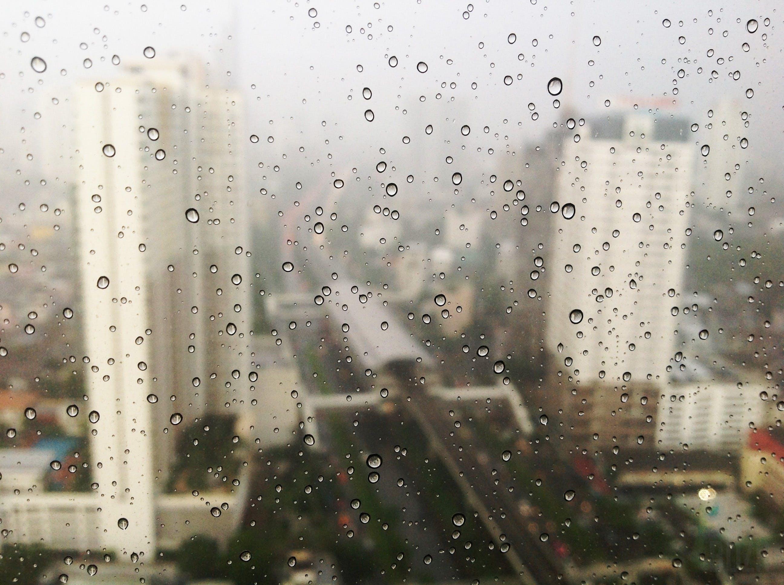 Free stock photo of city, rainy, rain, raindrops
