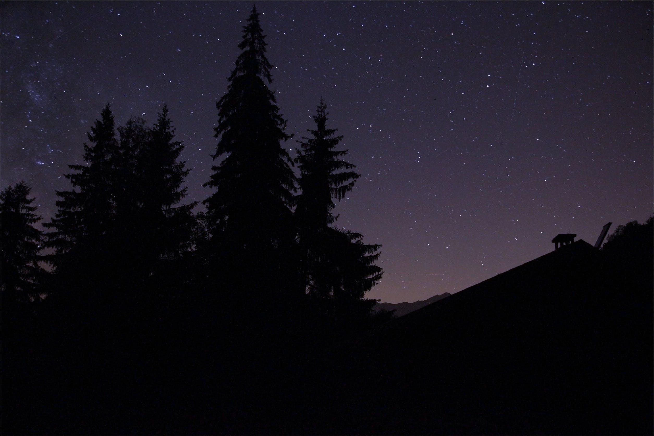 Free stock photo of dark, night, purple, silhouette