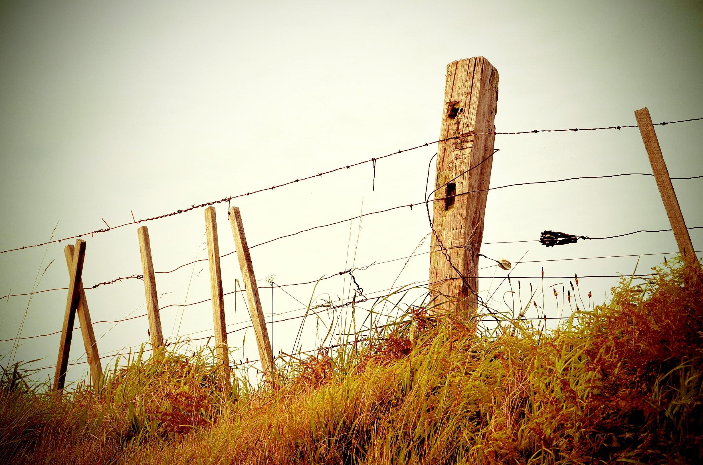 Αποτέλεσμα εικόνας για χωράφι με σύρματα
